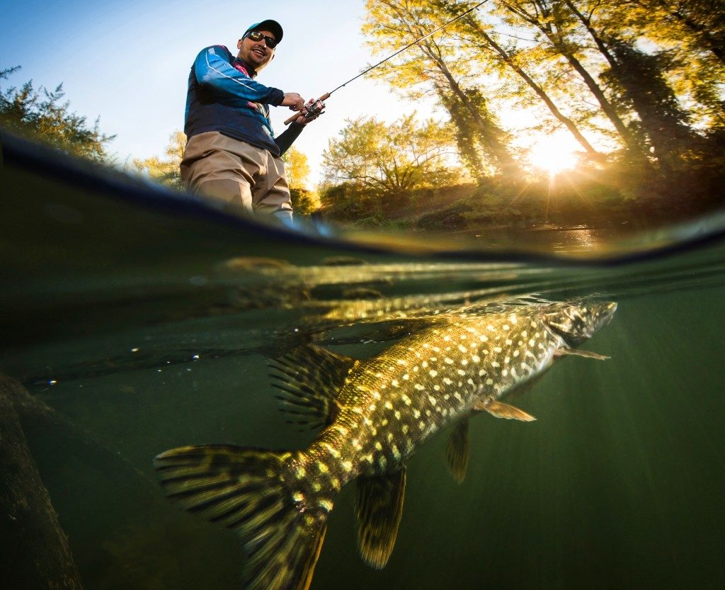 Fisherman about to catch a fish