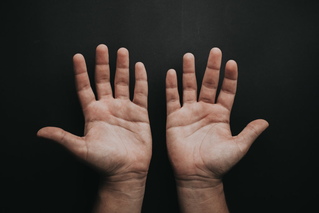 persons palms
